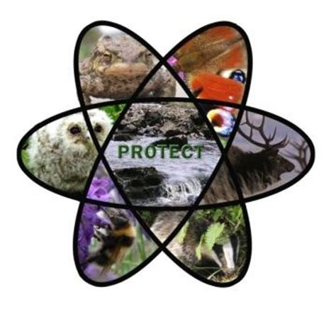 Radiation protection of the environment | Welcome to the