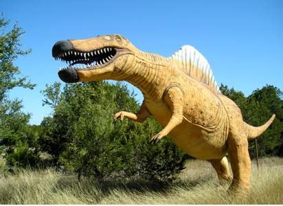 Dinosaur fossils, Facts, Pictures and Teeth