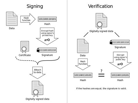 What role do hashes play in TLS/SSL certificate validation